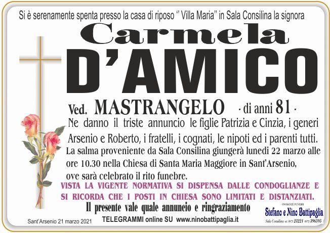 foto manifesto D\'AMICO CARMELA